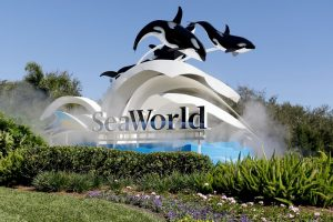 SeaWorld blackfish lawsuit