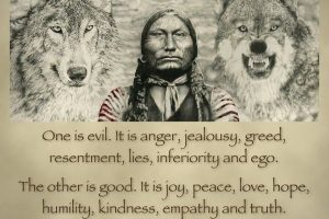 two wolves quote